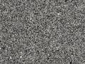 talbot-gray