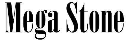 Mega Stone
